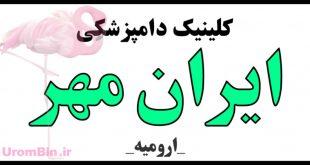 کلینیک دامپزشکی ایران مهر
