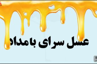 عسل سرای بامداد