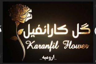 گل کارانفیل Karanfil Flower