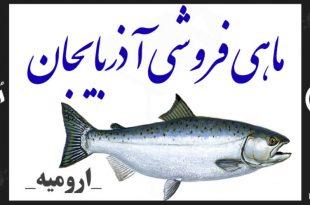 ماهی فروشی آذربایجان