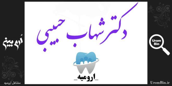 دکتر شهاب حبیبی گنگچینی Dr Shahab Habibi