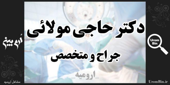 دکتر حاجی مولایی متخصص جراحی عمومی