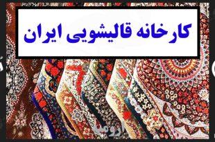 کارخانه قالیشویی ایران در ارومیه