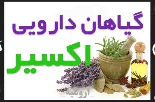 گیاهان دارویی اکسیر ارومیه