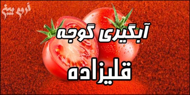 آبگیری گوجه قلیزاده