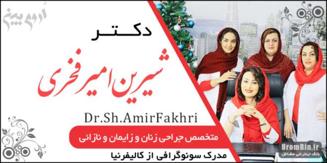 دکتر شیرین امیرفخری جراح و متخصص زنان و زایمان ارومیه