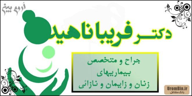 Dr Fardiba Nahid gynecologist