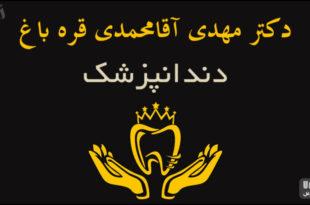 دکتر مهدی آقامحمدی قره باغ دندانپزشک