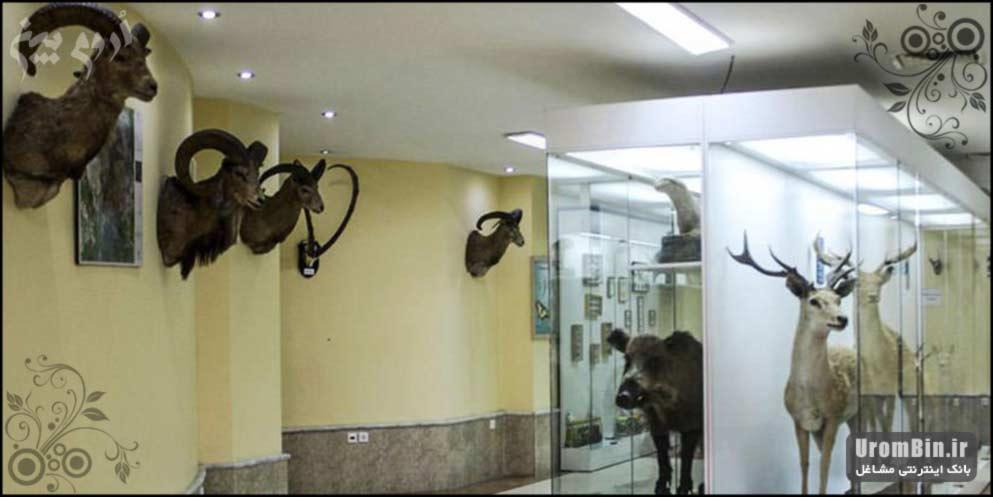 موزه-طبیعی-ارومیه