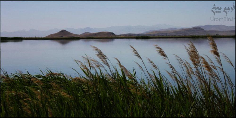 تالاب-شهرستان-نقده