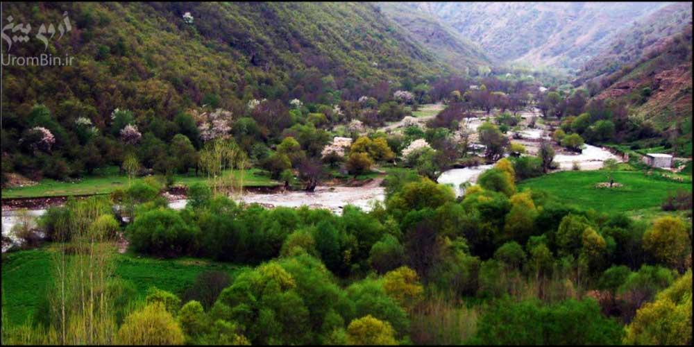 طبیعت-بکر-جنگل-پردانان