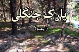 پارک-جنگلی-ارومیه