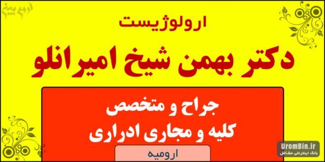 دکتر بهمن شیخ امیرانلو کلیه و مجاری ادراری