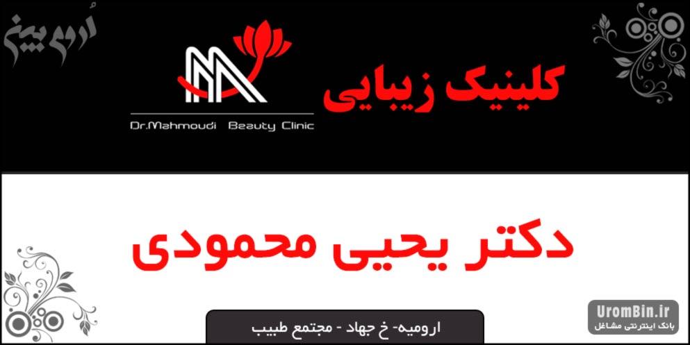دکتر یحیی محمودی ارومیه