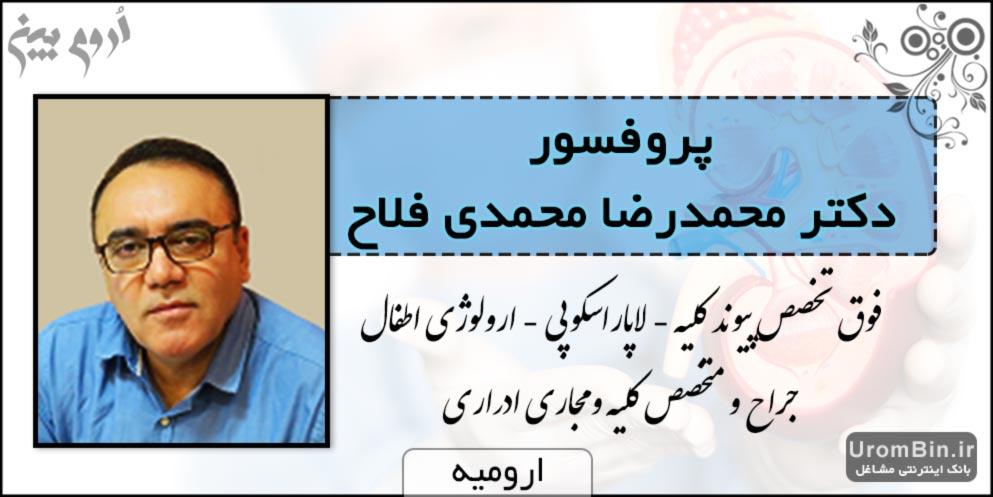 دکتر محمدرضا محمدی فلاح